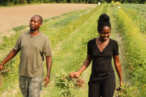 """""""Organic Farming"""""""